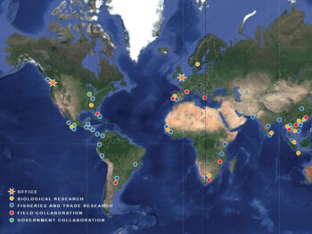 Map of the world showing where Project Seahorse works